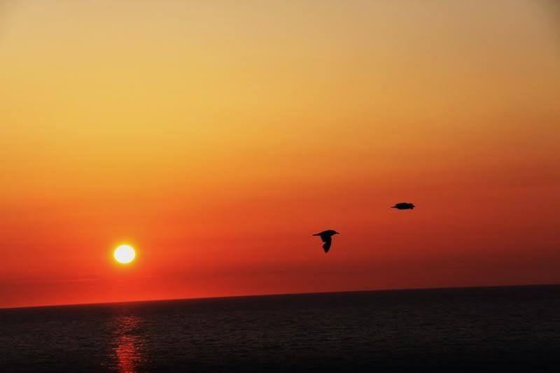 サン セット ビーチ 羽幌