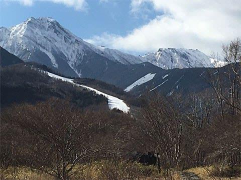 美し森から見た雪の八ヶ岳