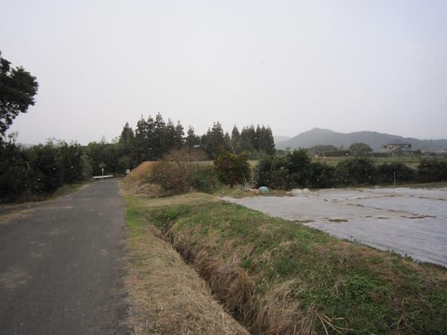 2011013005
