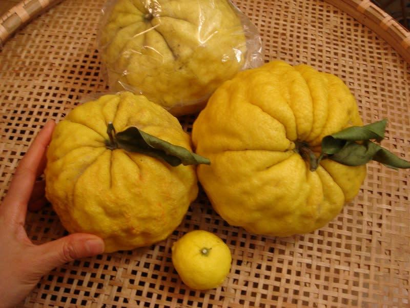2009/12/07栗のお菓子