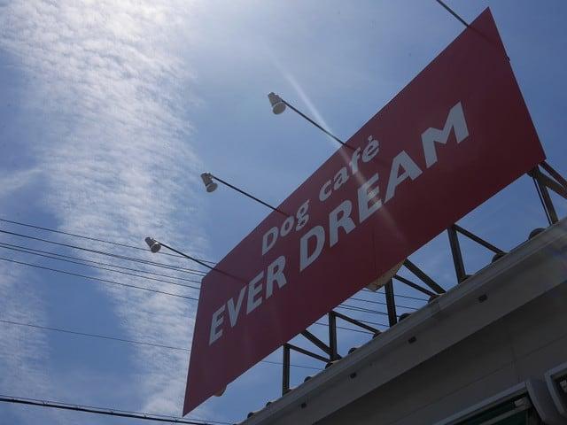 EVER DREAM - 趣味悠々~放蕩三昧...
