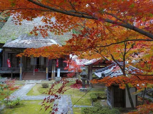 東近江探訪 隠れ紅葉の名所「瓦屋禅寺」(11/16) - 「ウォーキング ...