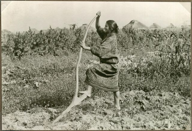 Woman_with_a_digging_stick_10795493