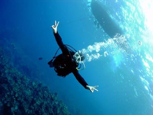 沖縄のダイビングショップ「リフィー」