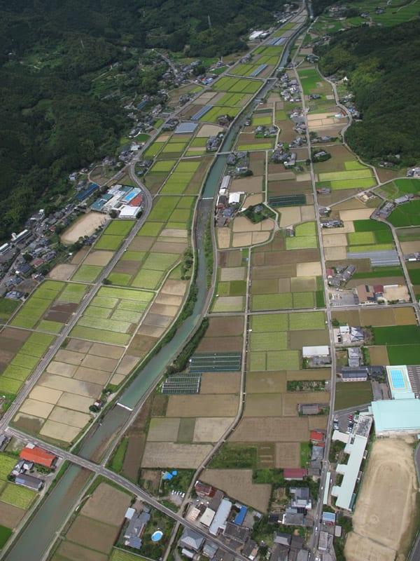 Farming_sumoto_5