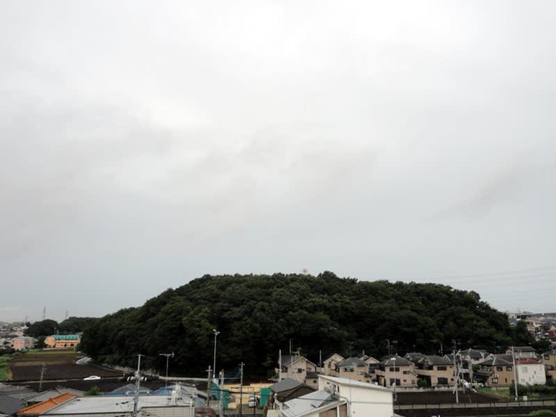 08月25日 根岸台
