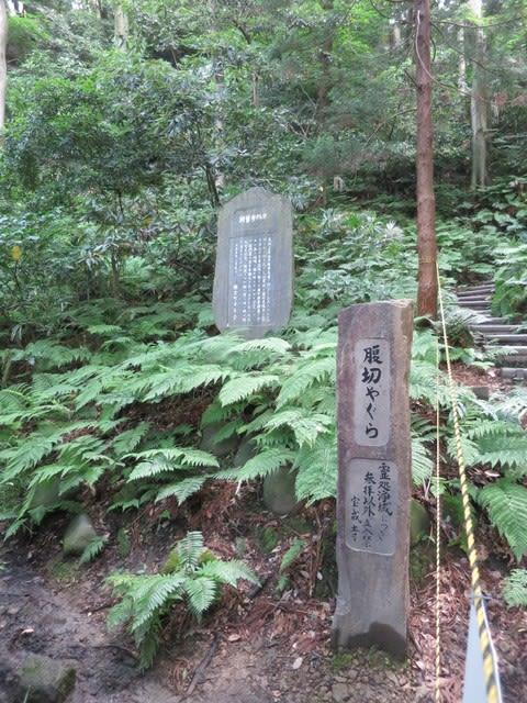 鎌倉幕府 場所