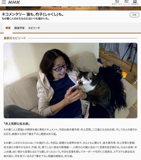 2020 ネ コメンタリー NHKの人気番組「ネコメンタリー 猫も、杓子(しゃくし)も。」が待望の書籍化!