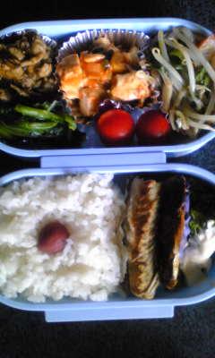 今週末のお弁当[鯖の塩焼き]