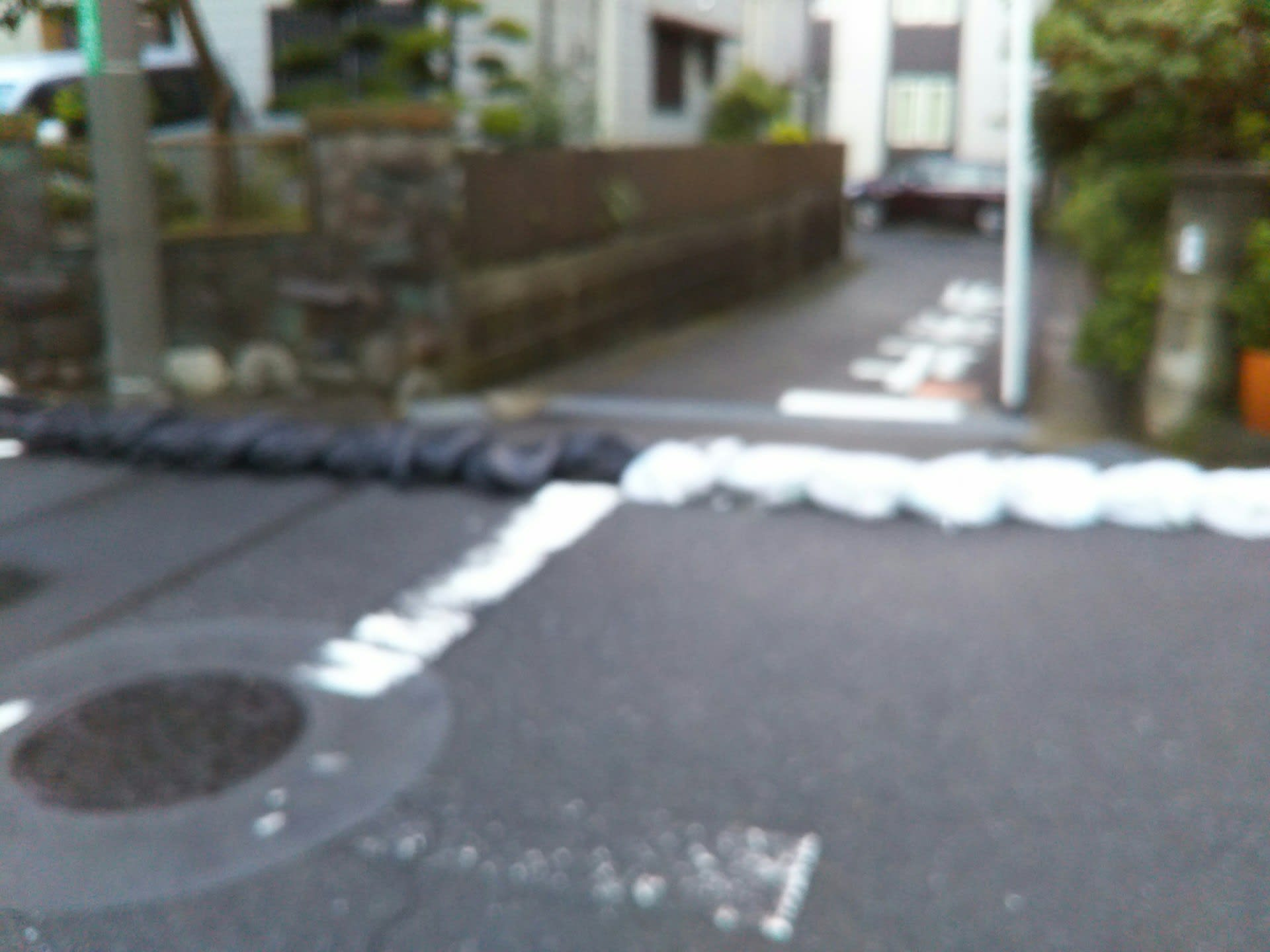 阿波 踊り 台風