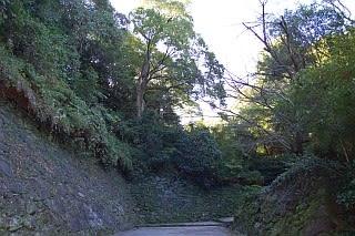 wakayamajo0