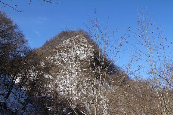 て の 作柄 稲 を 滝 を どこ し 見 岩手 占う たろ