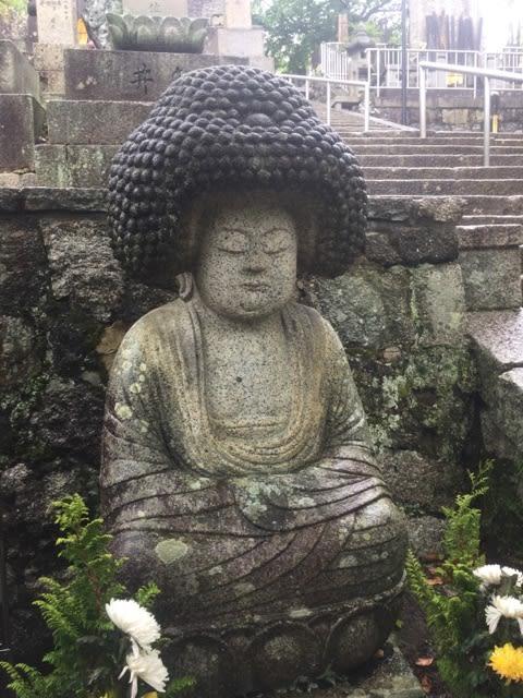 雨の京都② 行きたかった寺社 - ...