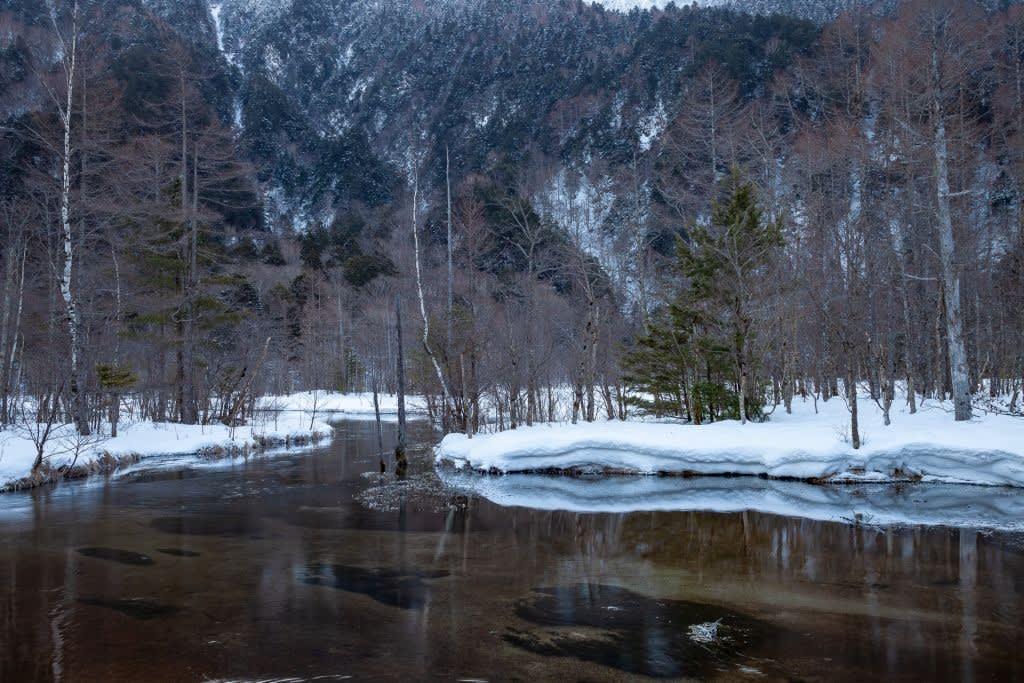 田代池の写真