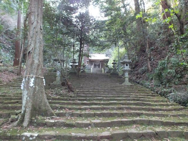 八幡宮来宮神社の社殿
