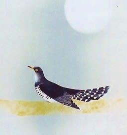 鳥 禽 鶏