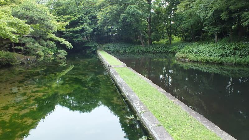 小石川後楽園の西湖の堤