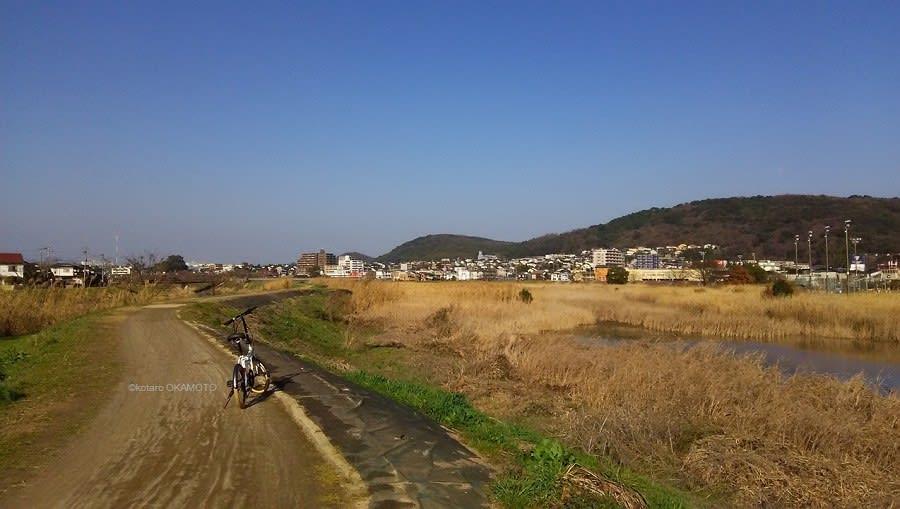 坪井 川 緑地 公園