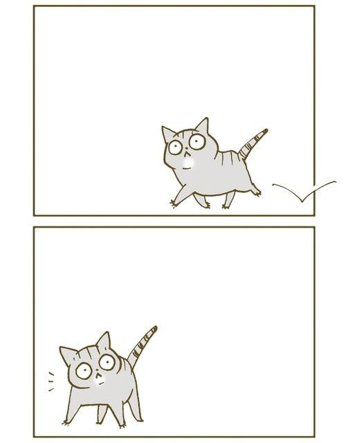 キティ野郎