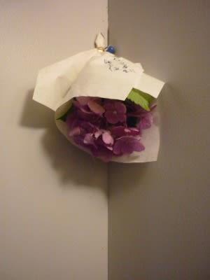 の おまじない 紫陽花