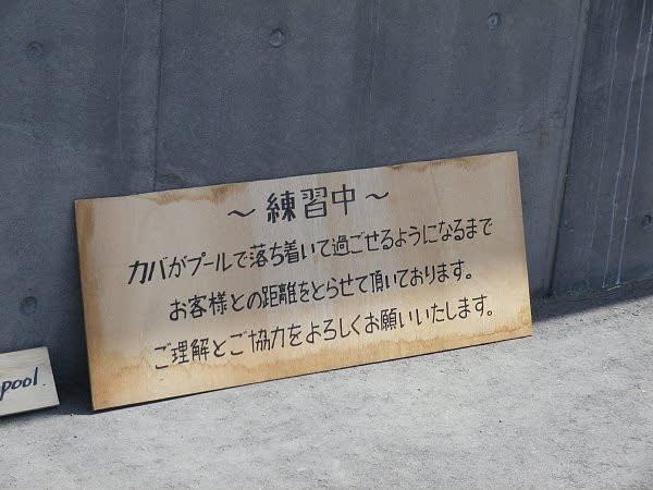 https://blogimg.goo.ne.jp/user_image/16/98/d124a1ad38ea1d255455958664b5390c.jpg?random=2b7bb1a64eb5fa07e1aaf6a81a2e7fd2