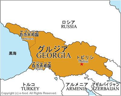 Detail_georgia