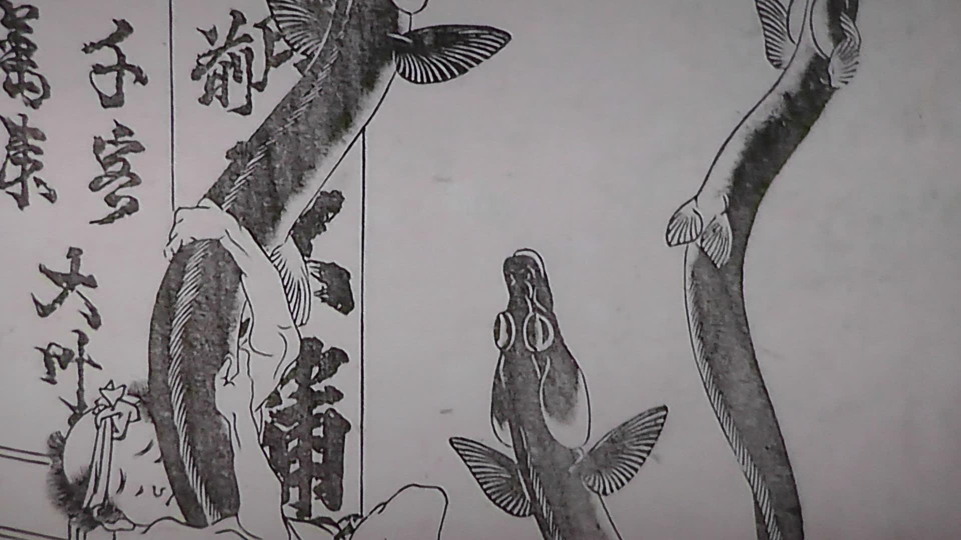 続『世界を驚かせた北斎漫画』 -...