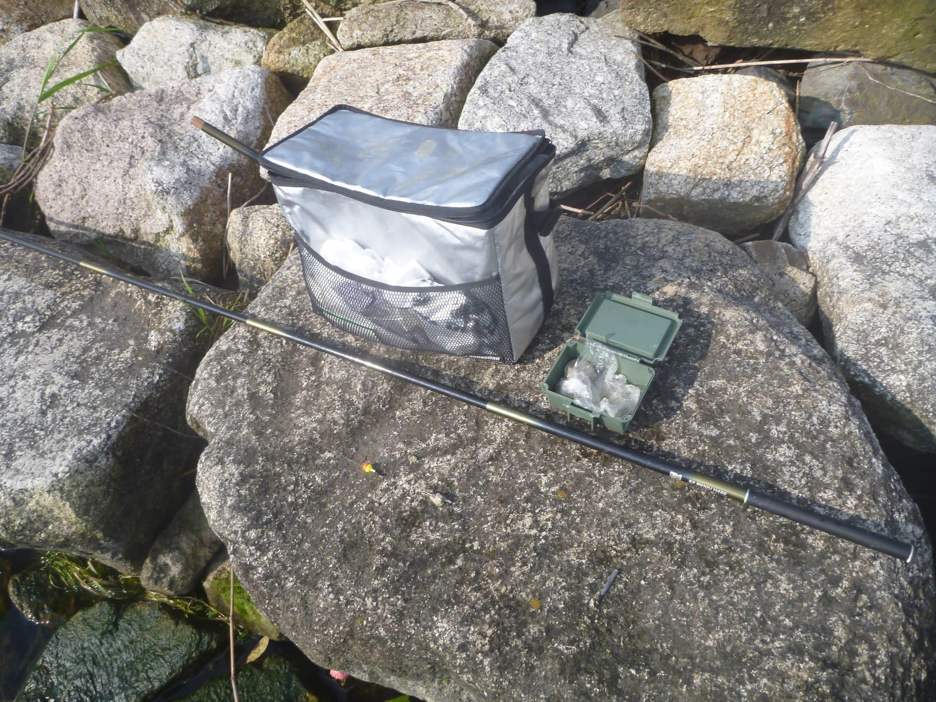 小 鮎 釣り 2020 琵琶湖