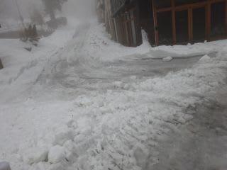 今日は参道の(自主的)除雪の日