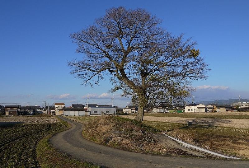 西側には道、東側は田圃で削られている