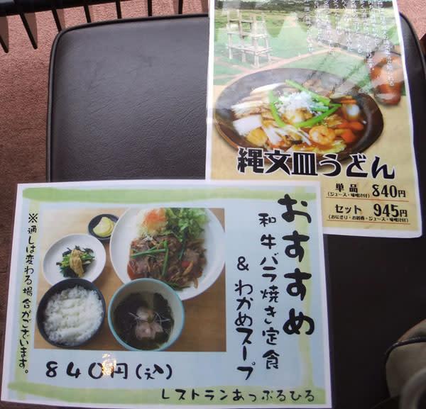 Tohoku130501307