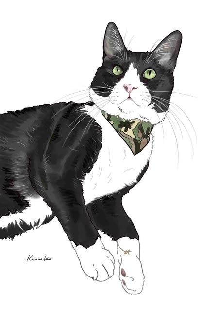 白黒猫たち イラストで 猫絵日記