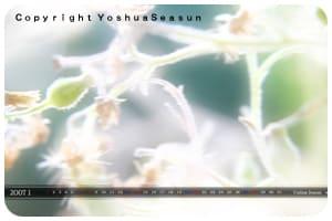Yoshua
