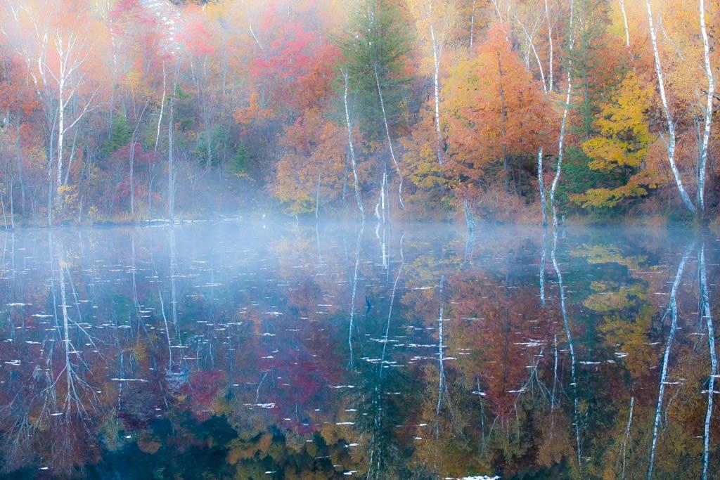 まいめの池の紅葉写真