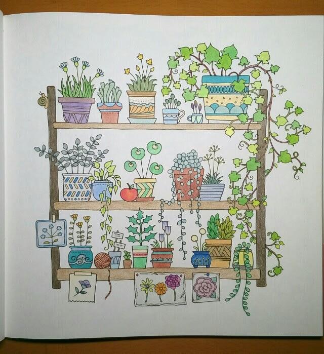 フラワーズ 花を彩るぬりえブック観葉植物の棚ダーウェントカラー