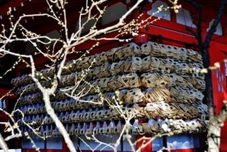 鎌倉だより・・・荏柄天神社の梅...