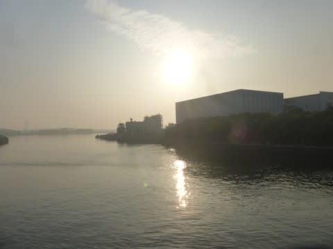 多摩運河の朝…多摩川夏景色シリ...