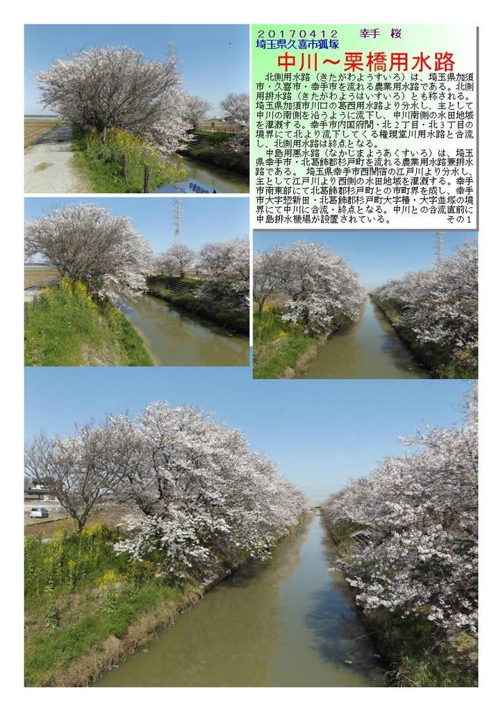 中島用悪水路 - JapaneseClass.jp