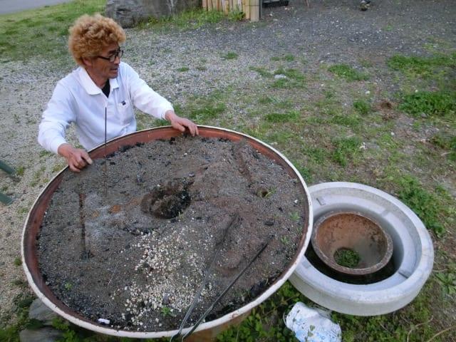 ニジマス塩焼きの準備1