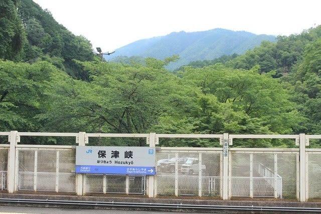 1159 梅雨空の愛宕山(愛宕172)...