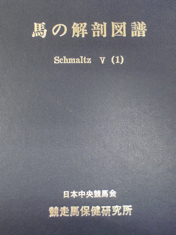 Pb015227