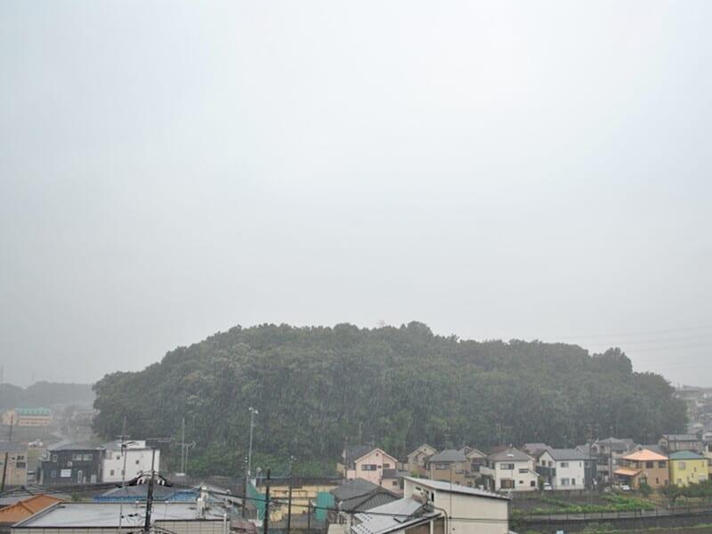 08月30日 午後の根岸台