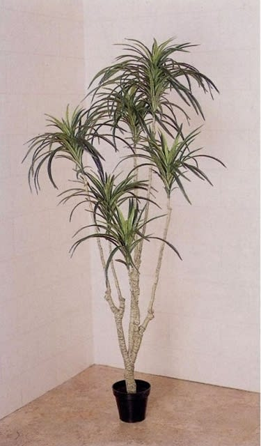 インテリア リアルな南国 人工観葉植物 ユッカ