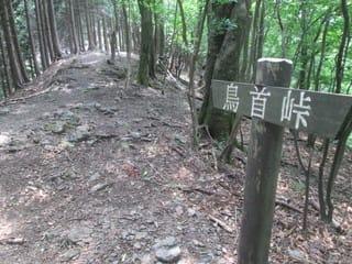 https://blogimg.goo.ne.jp/user_image/1a/c9/90cebac5f8e0e0be10c10853563a2e19.jpg