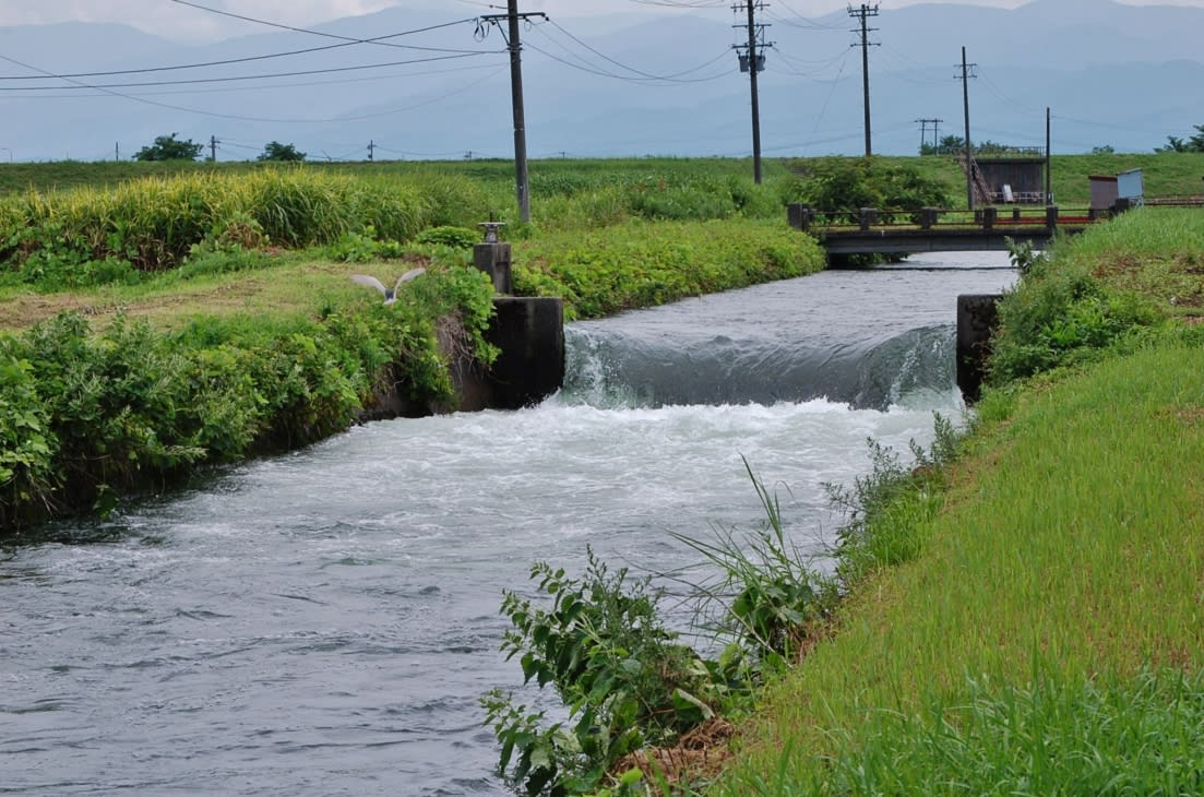 井田川から取水か・・・富山市西部探索・牛ヶ首用水 - 立山日和。