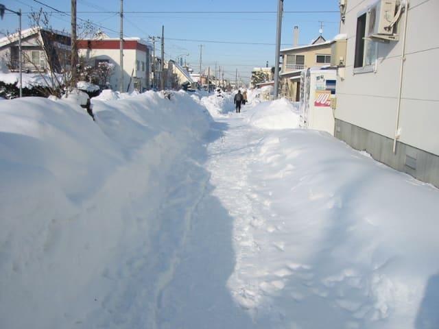 旭川市内の住宅街 道路脇の雪 - ~ 北の散歩道 Ⅱ ~