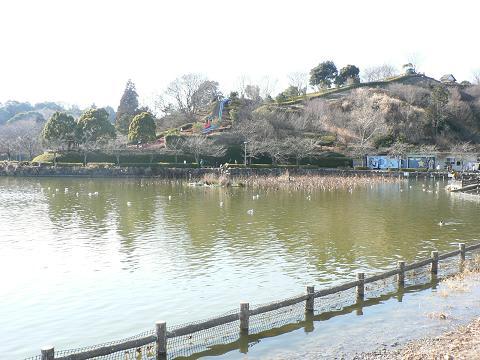 池と滑り台