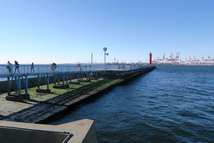 大黒 海 釣り 横浜フィッシングピアーズの大黒ふ頭海釣り施設はレンタル竿、駐車場...