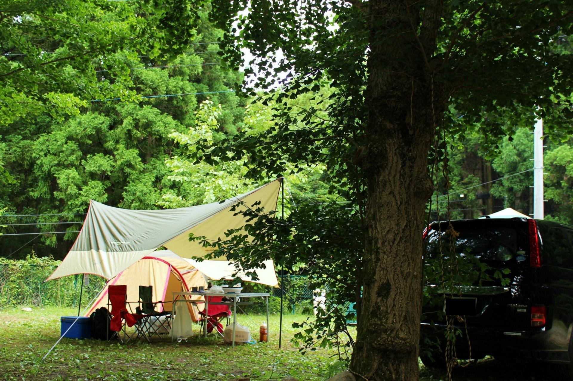 椿 荘 オート キャンプ 場 天気