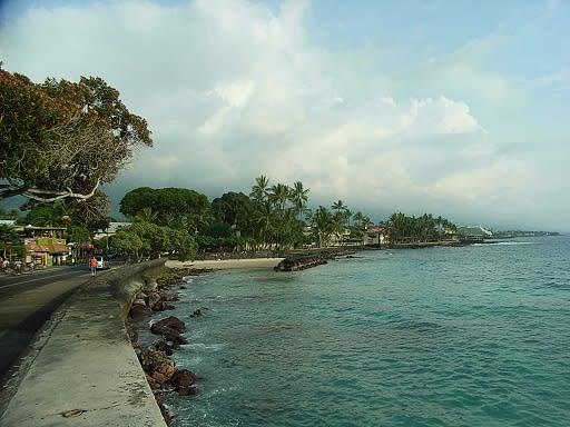 Hawaiikona2
